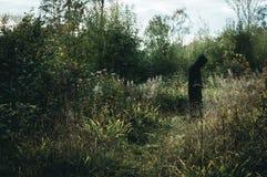 Ένας σκοτεινός, απόκοσμος με κουκούλα αριθμός, που στέκεται στη δασώδη περιοχή, με χαμηλωμένο εκδίδει στοκ φωτογραφίες με δικαίωμα ελεύθερης χρήσης