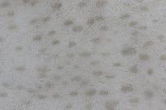 Ένας στενοχωρημένος άσπρος τοίχος με τη σύσταση σημείων στοκ φωτογραφίες με δικαίωμα ελεύθερης χρήσης