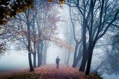 Ένας στην ομίχλη Στοκ Εικόνες