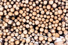 Ένας συσσωρευμένος σωρός των τεμαχισμένων κούτσουρων από το πεύκο Στοκ Εικόνες
