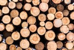 Ένας συσσωρευμένος σωρός των τεμαχισμένων κούτσουρων από το πεύκο διατηρεί το φλοιό και το s τους Στοκ εικόνες με δικαίωμα ελεύθερης χρήσης