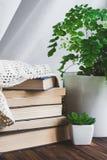 Ένας σωρός των βιβλίων και πράσινες εγκαταστάσεις σε έναν πίνακα με το κερί Χρονική έννοια ανάγνωσης στοκ φωτογραφία