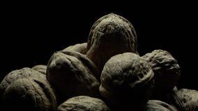 Ένας σωρός των ξύλων καρυδιάς απόθεμα βίντεο