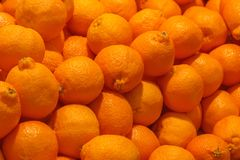 Ένας σωρός των πορτοκαλιού φρούτων κλημεντινών ή του tangelo minneola στοκ εικόνες με δικαίωμα ελεύθερης χρήσης