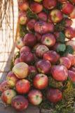 Ένας σωρός των yummy ώριμων γλυκών juicy κόκκινων μήλων Στοκ εικόνα με δικαίωμα ελεύθερης χρήσης