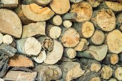 Ένας τοίχος του ξύλου Στοκ εικόνες με δικαίωμα ελεύθερης χρήσης