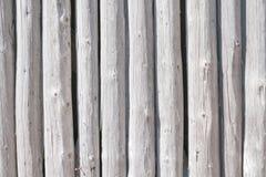 Ένας τοίχος των κούτσουρων Στοκ φωτογραφίες με δικαίωμα ελεύθερης χρήσης