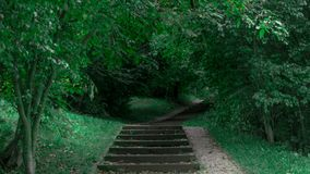 Ένας τρόπος μέσω του είδους φύσης στην πόλη στοκ εικόνες με δικαίωμα ελεύθερης χρήσης