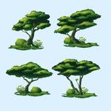 Ένας υψηλός - ποιοτικά δέντρα με μια κυρτή κορώνα διανυσματική απεικόνιση