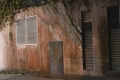 Ένας φράκτης που καλύπτεται από τις εγκαταστάσεις στοκ εικόνες