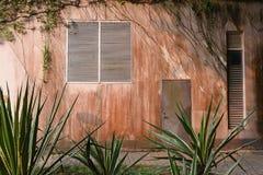 Ένας φράκτης που καλύπτεται από τις εγκαταστάσεις στοκ φωτογραφίες