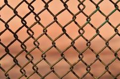 Ένας φράκτης φιαγμένος από σίδηρο καθαρό Στοκ φωτογραφίες με δικαίωμα ελεύθερης χρήσης