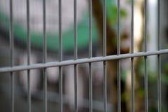 Ένας φράκτης Στοκ εικόνες με δικαίωμα ελεύθερης χρήσης