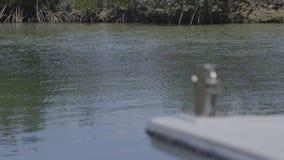 Ένας φυσικός αγροτικός πυροβολισμός φιλμ μικρού μήκους