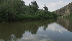 Ένας φυσικός ποταμός που τρέχει εν τούτοις έναν πιό forrest απόθεμα βίντεο