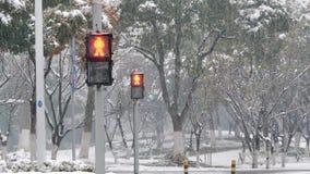 Ένας φωτεινός σηματοδότης για τον πεζό στο χιόνι πόλη πάγκων που καλύπτεται αστικός χειμώνας δέντρων χιονιού τοπίων Για τους πεζο απόθεμα βίντεο