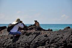 Ένας φωτογράφος και ένα Iguana στοκ εικόνες