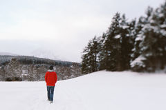 Ένας χειμερινός περίπατος Στοκ φωτογραφία με δικαίωμα ελεύθερης χρήσης