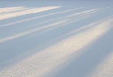 Ένας χιονώδης τομέας Στοκ φωτογραφίες με δικαίωμα ελεύθερης χρήσης