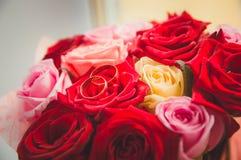 Ένας χρυσός γάμος χτυπά τα υπόλοιπα στα κόκκινα τριαντάφυλλα Γαμήλια διακόσμηση, το σύμβολο της οικογένειας στοκ φωτογραφία με δικαίωμα ελεύθερης χρήσης