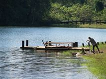 Ένας ψαράς μέσα στην όμορφη λίμνη Στοκ εικόνα με δικαίωμα ελεύθερης χρήσης