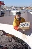 Ένας ψαράς με ένα κιβώτιο ψαριών μέσα σε ένα αλιευτικό σκάφος στοκ φωτογραφία με δικαίωμα ελεύθερης χρήσης
