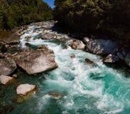 Ένας όμορφος τυρκουάζ ποταμός στον επάνω δρόμο Hollyford, εθνικό πάρκο Fiordland, Νέα Ζηλανδία στοκ εικόνα