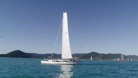Ένας όμορφος ωκεανός με τα catboats απόθεμα βίντεο