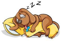 Ένας ύπνος σκυλιών με ένα μαξιλάρι Στοκ εικόνα με δικαίωμα ελεύθερης χρήσης