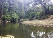 ένας rafting γύρος στη ζούγκλα στοκ εικόνα