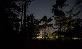 Έναστρος ουρανός πέρα από το δάσος και το δρόμο Στοκ εικόνες με δικαίωμα ελεύθερης χρήσης