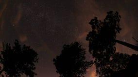 Έναστρος ουρανός στα βουνά απόθεμα βίντεο