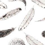 Ένα άνευ ραφής σχέδιο με τα φτερά watercolor Στοκ Εικόνες