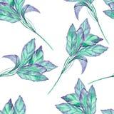 Ένα άνευ ραφής σχέδιο με τον πράσινο βασιλικό watercolor σε ένα άσπρο υπόβαθρο Στοκ φωτογραφίες με δικαίωμα ελεύθερης χρήσης