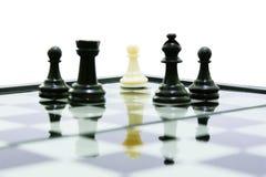 Ένα άσπρο ενέχυρο στο μαύρο σκάκι ομάδων πάλης σκιών βασιλιάδων Στοκ εικόνες με δικαίωμα ελεύθερης χρήσης