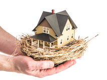 Ένα άτομο κρατά μια φωλιά πουλιών με ένα μικροσκοπικό σπίτι μέσα Στοκ Φωτογραφία