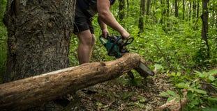 Ένα άτομο με ένα αλυσιδοπρίονο κόβει το δέντρο Στοκ εικόνα με δικαίωμα ελεύθερης χρήσης
