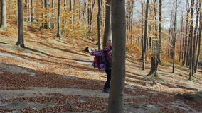 Ένα άτομο με ένα σακίδιο πλάτης στους ώμους του κατεβαίνει από μια πορεία υψηλών βουνών Κίτρινη πτώση φύλλων από τα δέντρα χρυσός απόθεμα βίντεο