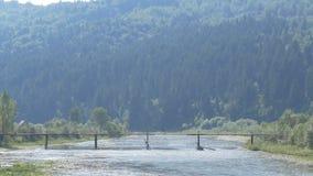 Ένα άτομο πηγαίνει πέρα από τον ποταμό βουνών σε μια γέφυρα φιλμ μικρού μήκους