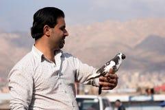 Ένα άτομο που κρατά ένα περιστέρι με την υπερηφάνεια στοκ φωτογραφία