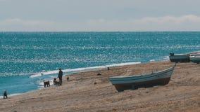 Ένα άτομο που παίζει με τα σκυλιά κοντά στη θάλασσα Αλιευτικά σκάφη στην ακτή στο Γιβραλτάρ, Ισπανία απόθεμα βίντεο