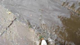 Ένα άτομο που περπατά στο νερό στα παπούτσια απόθεμα βίντεο