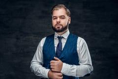 Ένα άτομο που φορά το κλασικό γιλέκο και το λεπτό δεσμό τόξων στοκ εικόνες