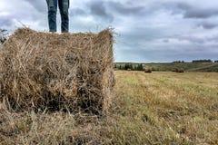 Ένα άτομο στέκεται σε μια θυμωνιά χόρτου στοκ φωτογραφία με δικαίωμα ελεύθερης χρήσης