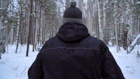 Ένα άτομο τρέχει το χειμώνα σε μια δασική πορεία πίσω όψη απόθεμα βίντεο