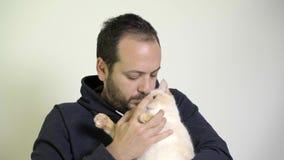 Ένα άτομο φροντίζει μια γάτα στην περιτύλιξή του - κόκκινο σημείο σιαμέζο απόθεμα βίντεο