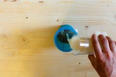Ένα άτομο χύνει το γάλα από ένα ποτήρι σε έναν μπλε δονητή για να ανακατώσει την πρωτεΐνη Πρωτεΐνη ορρού γάλακτος, ένας υγιής τρό στοκ φωτογραφίες με δικαίωμα ελεύθερης χρήσης