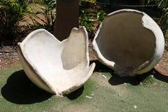 Ένα έκθεμα άσπρο eggshell φιαγμένο από granit στο ζωολογικό κήπο στοκ εικόνα με δικαίωμα ελεύθερης χρήσης