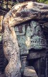 Ένα δέντρο αρχίζει να αναλαμβάνει τις καταστροφές σε Angkor Thom στην Καμπότζη Στοκ Εικόνες