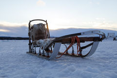 Ένα έλκηθρο για τη υψηλή ταχύτητα Στοκ φωτογραφία με δικαίωμα ελεύθερης χρήσης